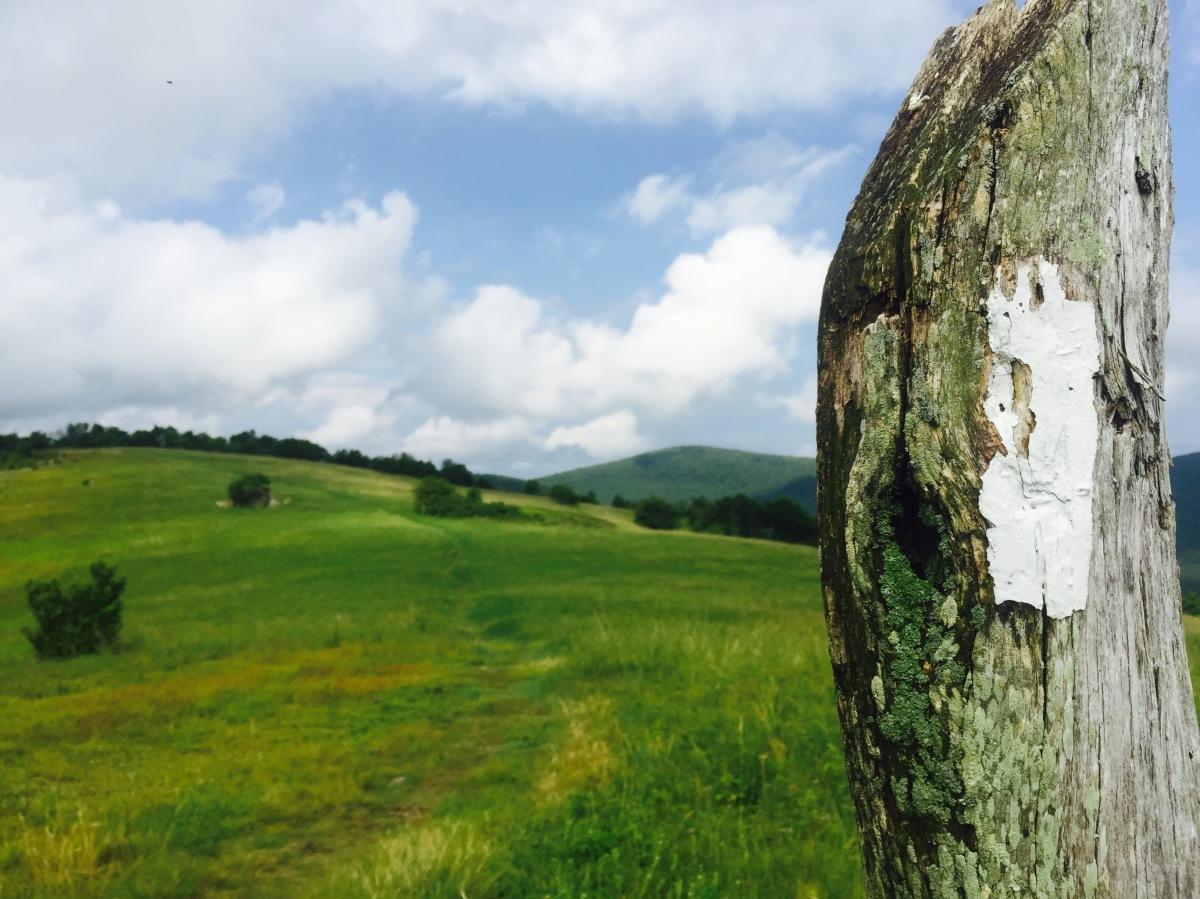 How the Appalachian Trail Wrecked My Life | Appalachian Trail Tales